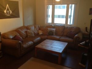 Bachelor Suite Apartment, Heart of Downtown