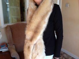 Miss Selfridge stole/scarf