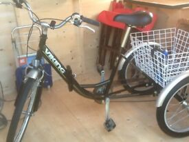 Adult folding 3 wheel bicycle