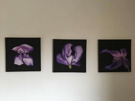 Set of 3 pictures on Canvas