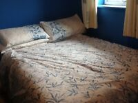 A clean double room with double bed, sky box and TV for rent(Monday-Friday) Prefered
