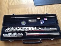 Flute. Perfect for young beginners