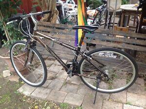 Giant ELWOOD SE mountain bike Ashfield Ashfield Area Preview