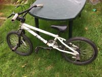 "Boys 20"" bmx bike with stunt pegs"
