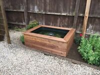 Pond with wooden surround
