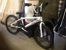 Childs Bicycle Two wheel White