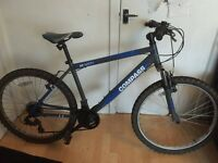 Compass North Alloy Hardtail Adult Mountain Bike - 19 Inch Frame Bicycle