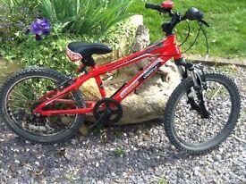 20inc wheels diamond back kids mountain bike good condition