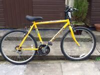 Coventry Domain Bike 22 inch Exc Cond