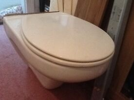 Floating 'back to wall' toilet