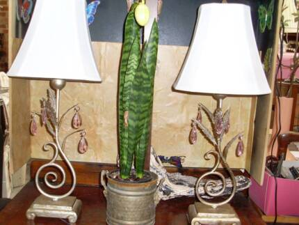 1 a pair table desk lamp antiques styleshabby french