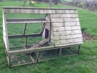 Lofted Chicken Run and House