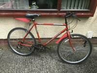 Gents' Universal Rapid Reacto vintage hybrid mountainbike