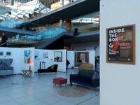 Professional interior designer, artist and curator.
