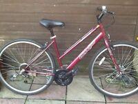 Apollo ladies Bike £35