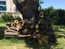 free firewood Tennyson Point Ryde Area Preview