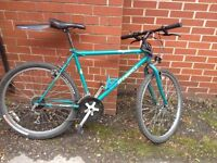 HYBRID BIKE with lock, mud guard and front light