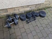 Adjustable Dumbbell handles and Plates