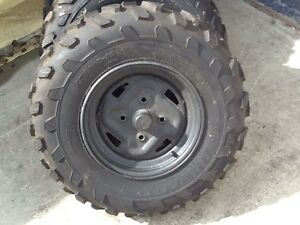 Quad tires with rims