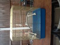 Parrot, Parakeet, Bird Cage in Gold and Blue, Ideel for two cockateils size birds