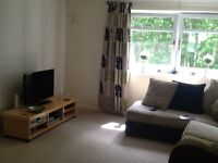Large upper cottage garden flat with open outlooks front and back