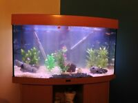 45 gallon (200 litre) bow front fish tank (NO STAND)
