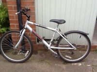 Childs Raleigh Bicycle