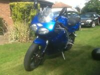 Triumph daytona 955i in metallic blue with new MOT 2000 W plate