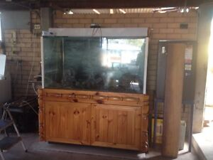 YES IM UP FOR SALE AND IM ONLY $500 Beenleigh Logan Area Preview