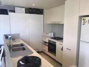 Second room for rent in apartment at Wolli creek Wolli Creek Rockdale Area Preview
