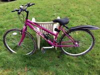 Townsend Atlantis Bicycle