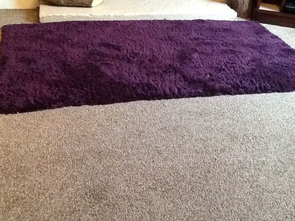Plum Purple Teddy Bear Rugs From Dunelm Mill X2