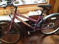 Girl's purple Universal Extreme bicycle