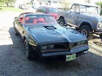 77 trans am bandit edition