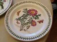 Vintage portmerion plates 3 large 4 small botanic garden