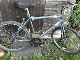 """Men's / Boy's Bike - 19 1/2"""". Used but Good Condition"""