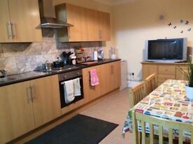 Lovely double/twin room with garden view - NO AGENCY FEE