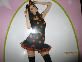 MINNIE MOUSE FANCY DRESS OUTFIT SIZE 10 PARTY OR HEN DO