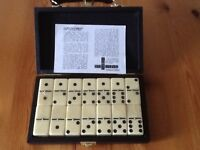 Set of dominos in carry case