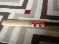 Gray Nicholls cricket bat