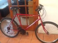 Lovely bike in great working order £40 can deliver for petrol 26 wheel21 gears21 frame no offers