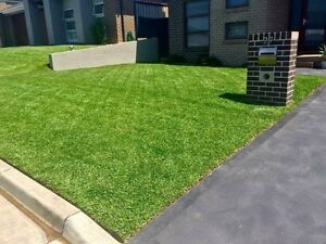 Remedy Lawn & Gardens Gungahlin Gungahlin Area Preview