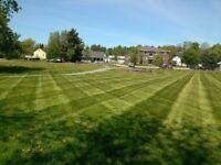 Lawncare services lawn mowing