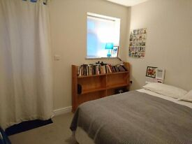 Single room in Lewes (Wallands) family house, own entrance. £400 pcm incl. all bills.