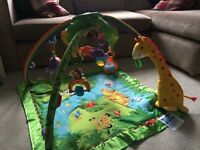 Fisherprice Rainforest Playgym