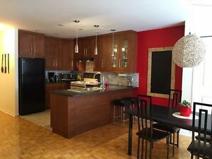 McGill - Looking for a clean roommate