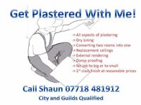 Plastering and Damp Proofing Specialist