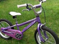 Specialized hotrock girls bike excellent condition