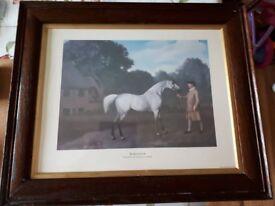 """Gimcrack"" print in oak frame."
