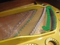 Bechstein Model C fully rebuilt restrung Grand Piano - The PIANO PAVILION